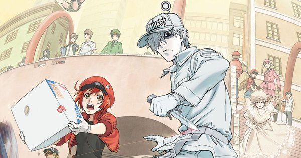 Cells At Work! Season 2